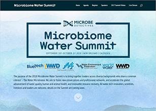 summit website